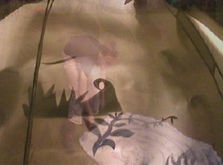 still from a video by Sonja van Kerkhoff